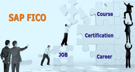 SAP Fico Course and Training