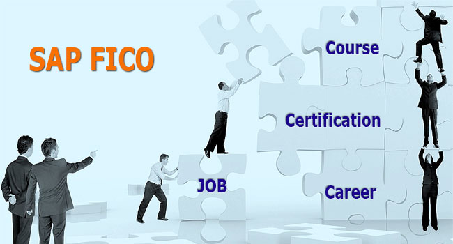Sap Fico Course and Training in New Delhi